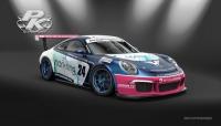 Porsche Belcar 2018